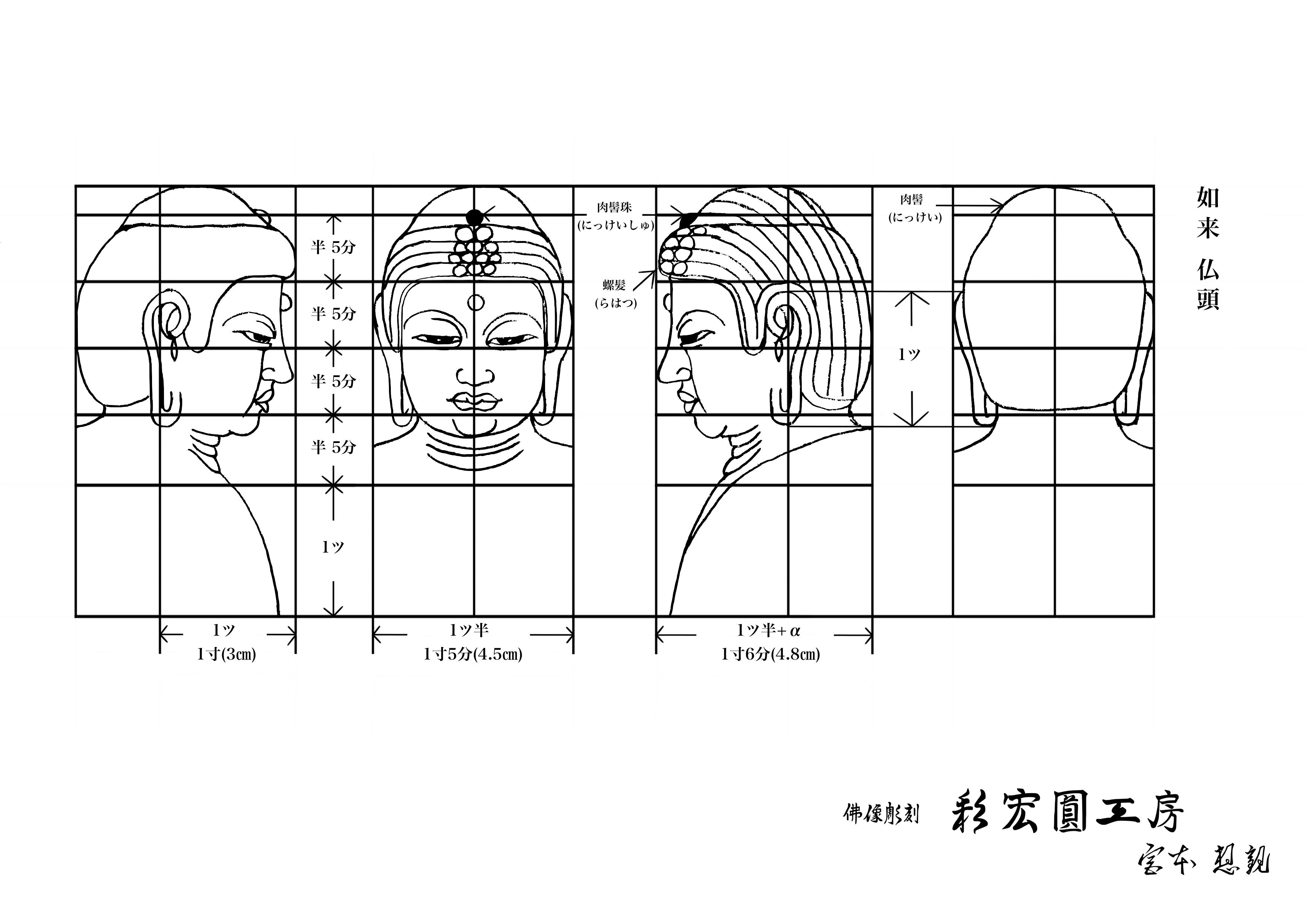 仏像,如来の仏頭の下絵・図面